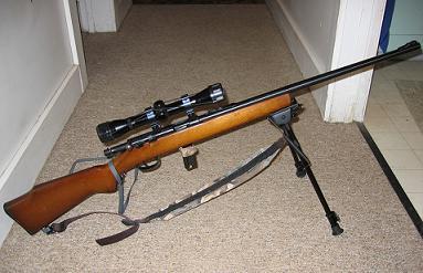Allegiance - .22 rifle