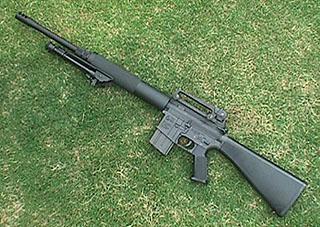 Allegiance - AR-15